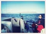 Sydney Hobart Yacht Race Menace4