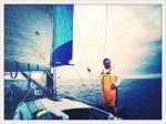 Sydney Hobart Yacht Race Menace5